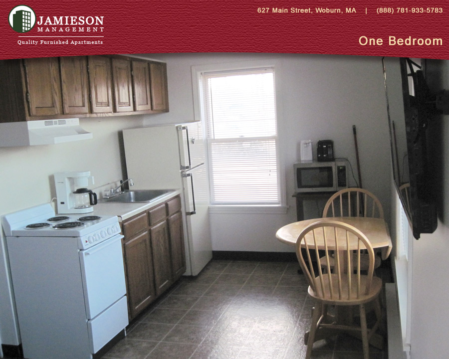 Furnished Apartments Boston | One Bedroom Apartment | 14 ...