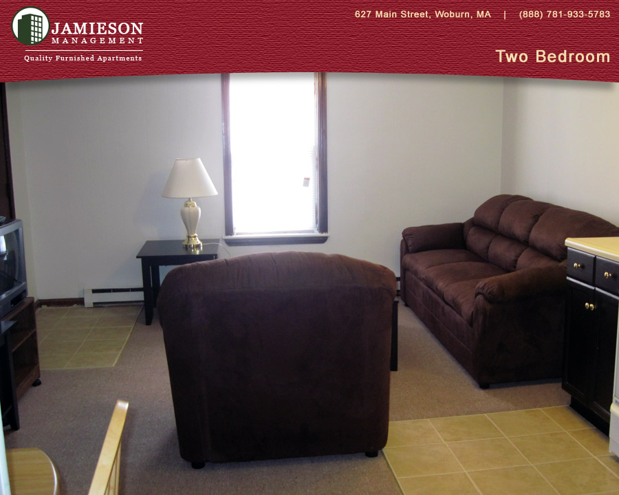 One Bedroom Furnished Apartments Boston One Bedroom Apartment Winn Flowers In Nanopics
