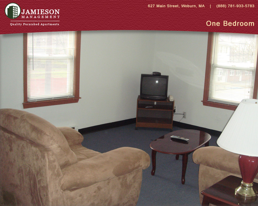 Furnished apartments boston one bedroom apartment 48 - Boston 1 bedroom apartments for sale ...