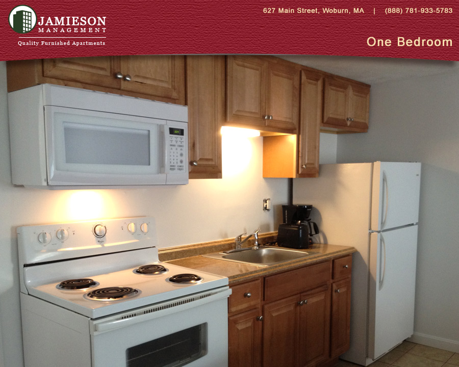 furnished apartments boston | one bedroom apartment | winn park