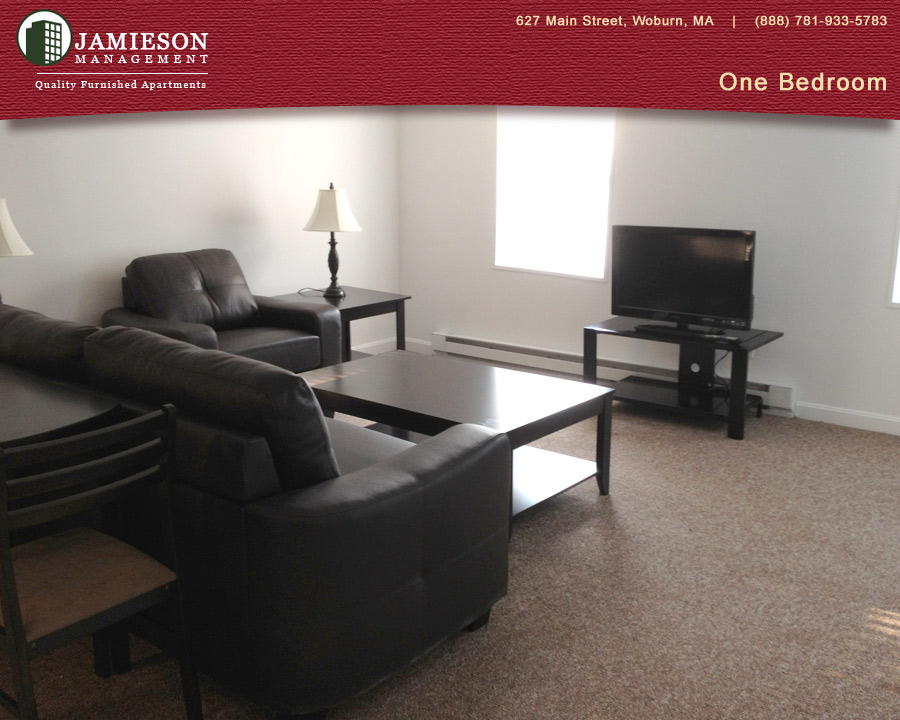 Furnished Apartments Boston One Bedroom Apartment Winn Park Woburn Ma Jamieson
