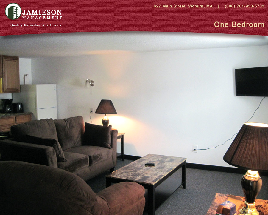 one bedroom furnished apartments boston one bedroom apartment winn